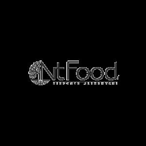 Logo Nt Food