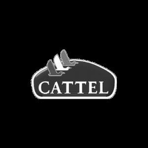Logo Cattel